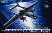 Ночной истребитель WWII USAAF Northrop P-61B 'Black Widow' Last Shoot Down 1945